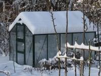 Весенняя теплица или зимняя: какую выбрать?