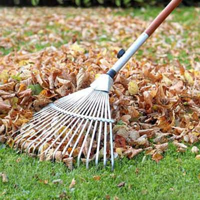 Уход за газоном осенью фото